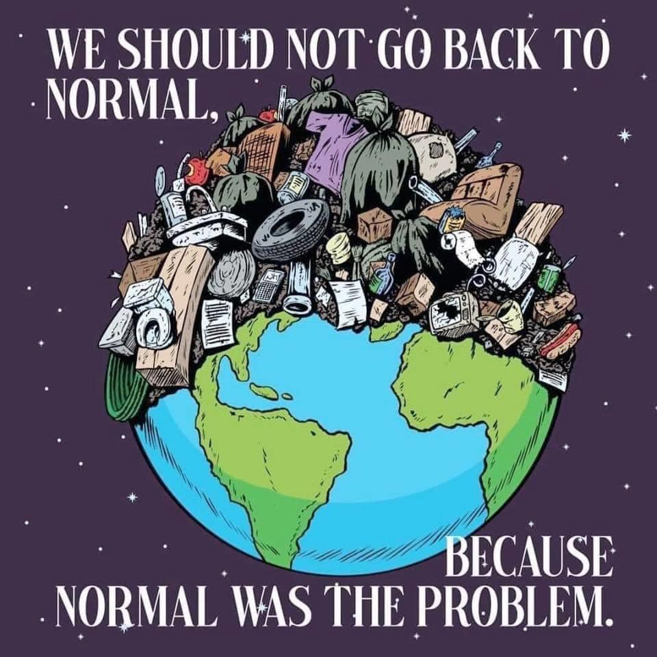 We should not go back to normal, because normal was the problem.